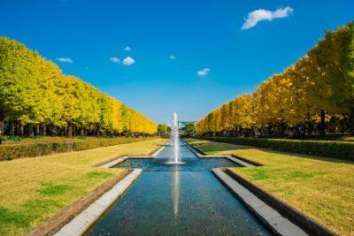 公園 水遊び 昭和記念公園