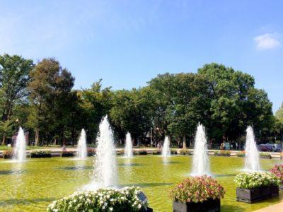 水遊び 公園 茨城 噴水 公園