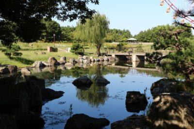 都内 公園 おすすめ 子供 池