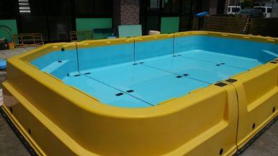 幼稚園 水遊び プール