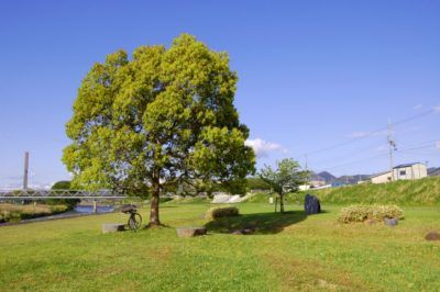 潮干狩り 福岡 公園