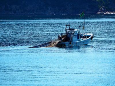浜名湖 潮干狩り 無料 漁船