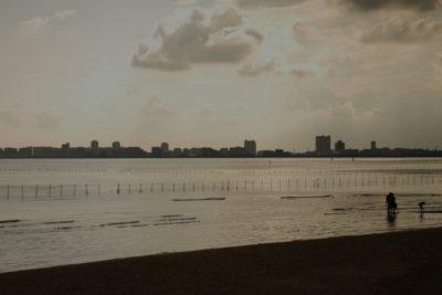 船橋三番瀬 潮干狩り ホンビノス 浜辺