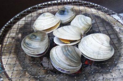 徳島 潮干狩り ハマグリ 炭火