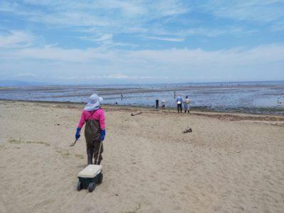 徳島 潮干狩り ハマグリ 砂浜