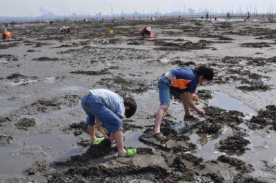 潮干狩り 愛知県 2020カレンダー 子供