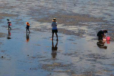 浜名湖ガーデンパーク 潮干狩り 家族