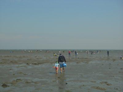 広島 潮干狩り 場所 砂浜