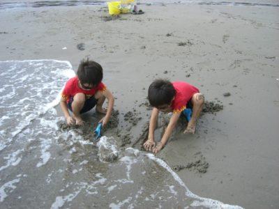 徳島 潮干狩り 月見ヶ丘 子供