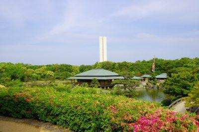 海の公園 フリマ ブログ 池