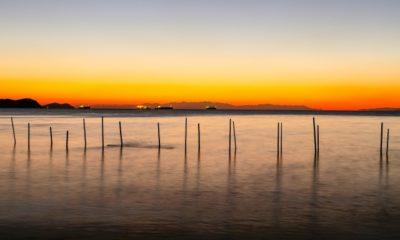 和歌山 浜の宮ビーチ 潮干狩り 夕焼け