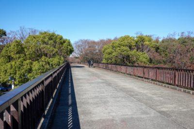 代々木公園 フリマ ブログ 橋