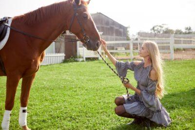 愛知 牧場 フリーマーケット 馬