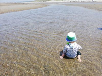 潮干狩り マテ貝 広島 子供