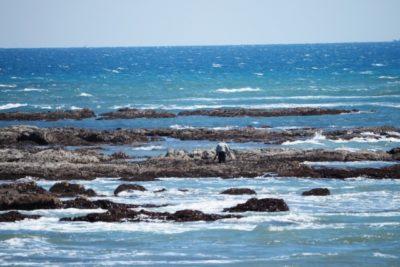 潮干狩り 兵庫 高砂 海岸