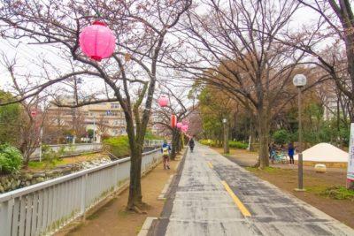 小金井公園 フリマ 4 月 公園