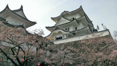 上野 プラネタリウム 360 度 上野城
