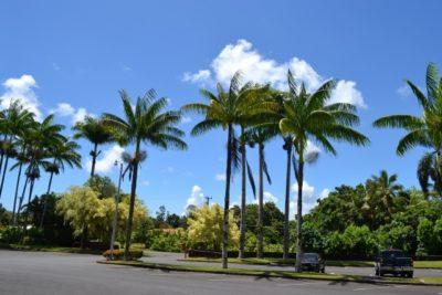 ハワイ 子供 連れ 飛行機 青空