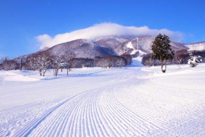 札幌 スキー場 子供向け 山