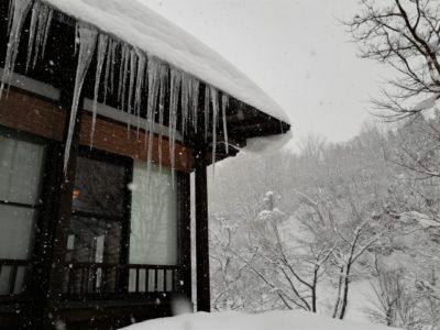 越後湯沢 スキー場 子供 つらら