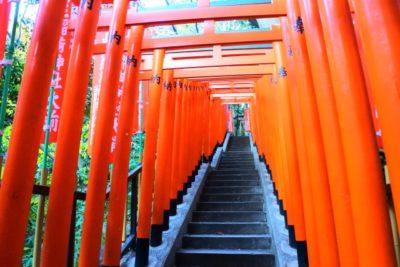 日枝神社 七五三 プラン ブログ 鳥居
