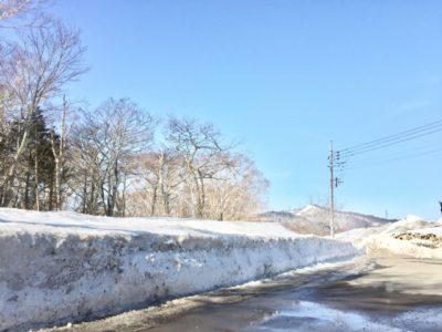 子供 雪 遊び バス ツアー 木