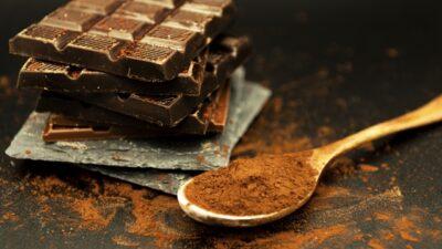 バレンタイン ワークショップ 子供 カカオ チョコレート